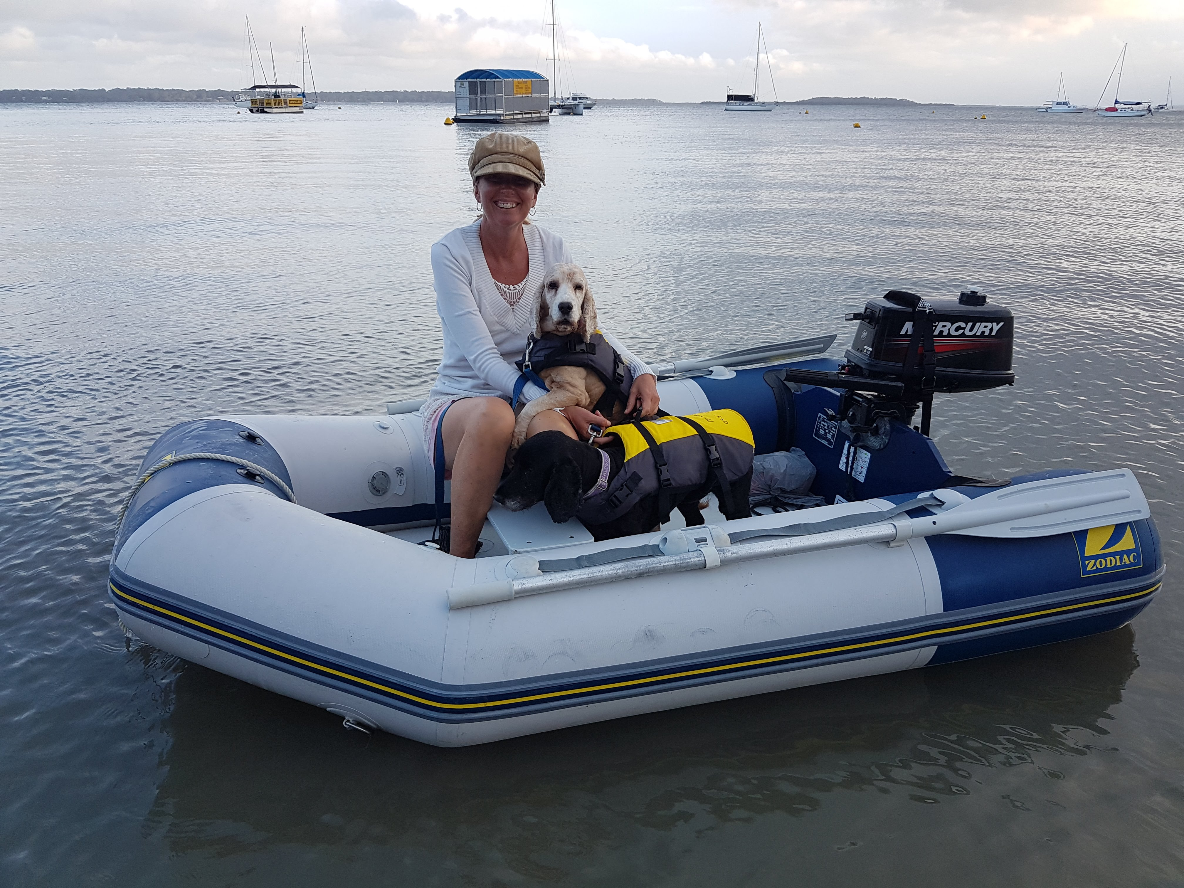 Toileting Solutions For Your Dog Onboard Your Boat – Dogs